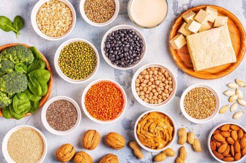 חלבון בריא ואיכותי