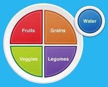 מפירמידת המזון לצלחת שלי